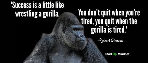 Gorilla Infograph