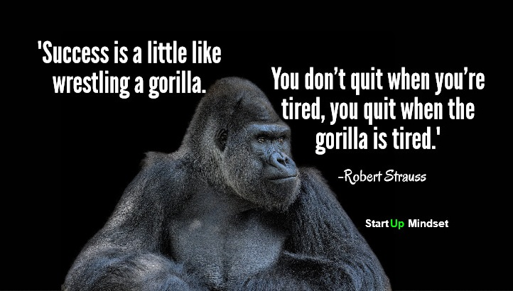 Gorilla-Infograph
